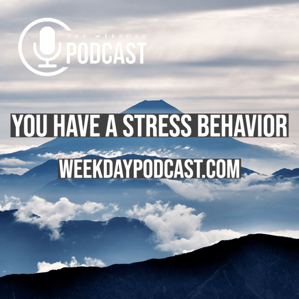 You Have a Stress Behavior